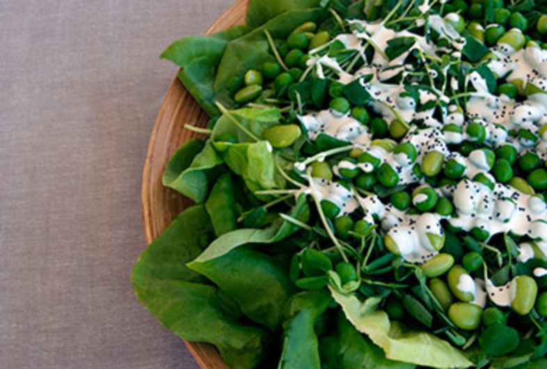 Fava Bean Salad with Poppy Seed Kefir Dressing