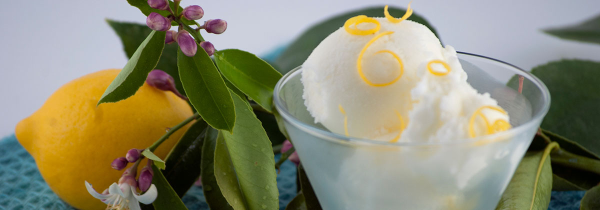 Recipes Lemon Kefir Sherbet Banner 1200X420Px
