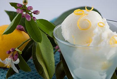 Lemon Kefir Sherbet