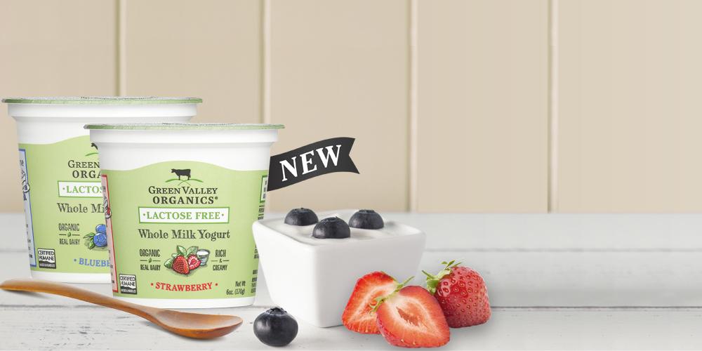 Homepage Banner Wm Yogurt Flavors V2 1