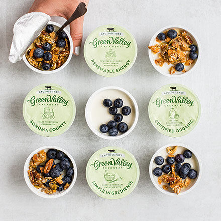 Gvc Yogurt Grid 440X440