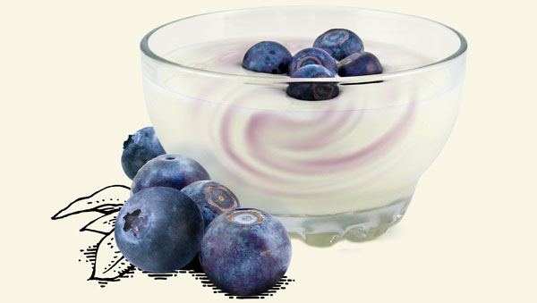 Products  Internal Yogurt Blueberry 600Px Wide