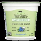 Blueberry Whole Milk Yogurt