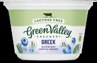 Lactose Free Greek Yogurt Blueberry
