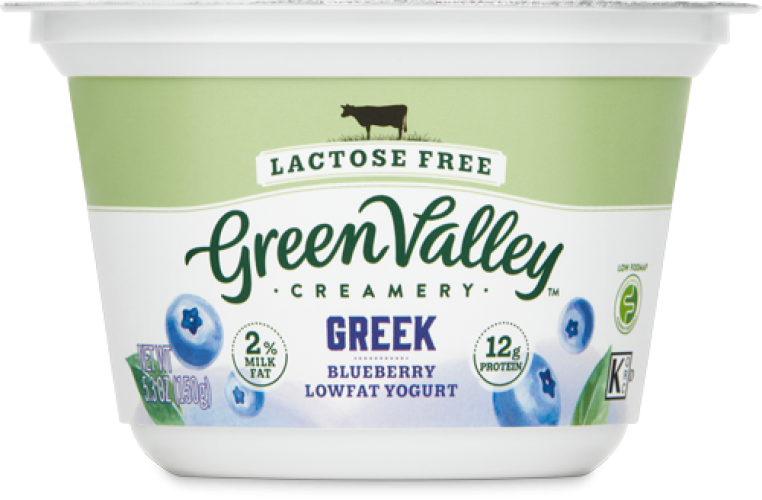 Lactose Free Greek Yogurt Blueberry